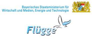 Flügge Logo